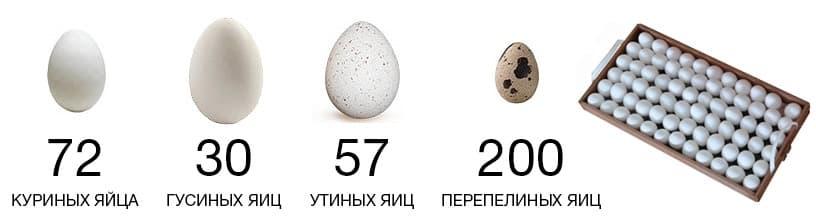 Цена на Инкубатор блиц Норма цифровой 72 яйца 220/12В с автоматическим поворотом и регулировкой влажности