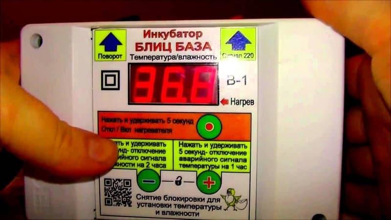 инкубатор блиц на 520 яиц цифровой с гигрометром заказать